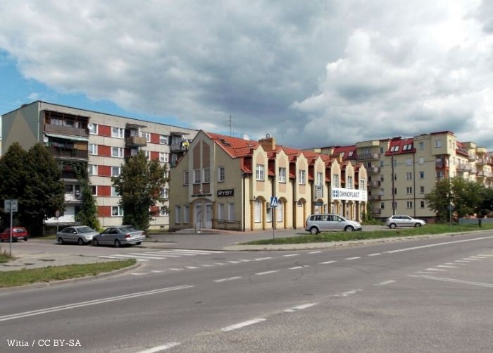 UM Augustów: Akcja szczepienia lisów