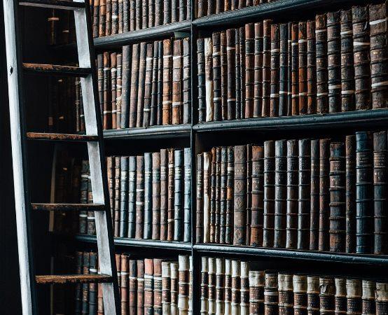 """Biblioteka Augustów: """"Jak wygląda życie w ulu?"""""""